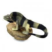 Réplica Iguana sobre Pedra