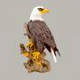 Águia Americana No Tronco