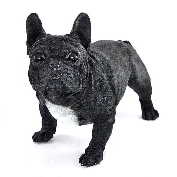 Bulldog Frances Preto