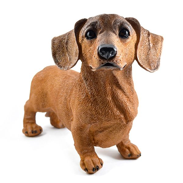 Cachorro Basset Marron