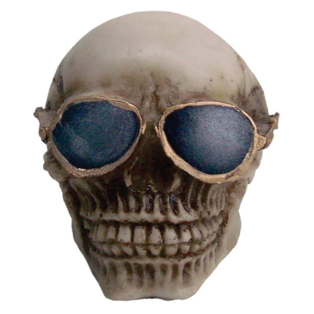 Caveira Crânio Estiloso com Óculos.