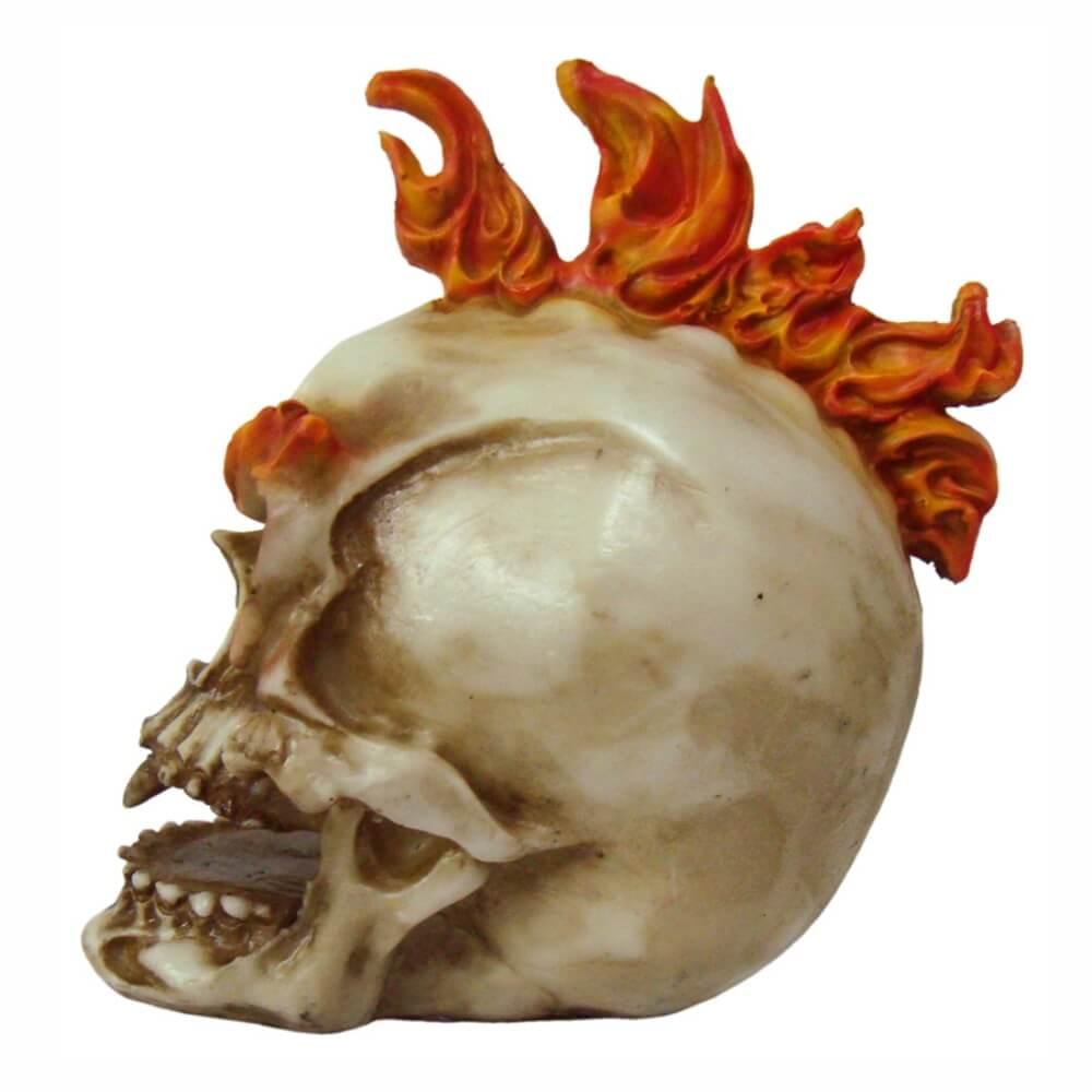 Crânio Caveira cabelo Moicano decoração.