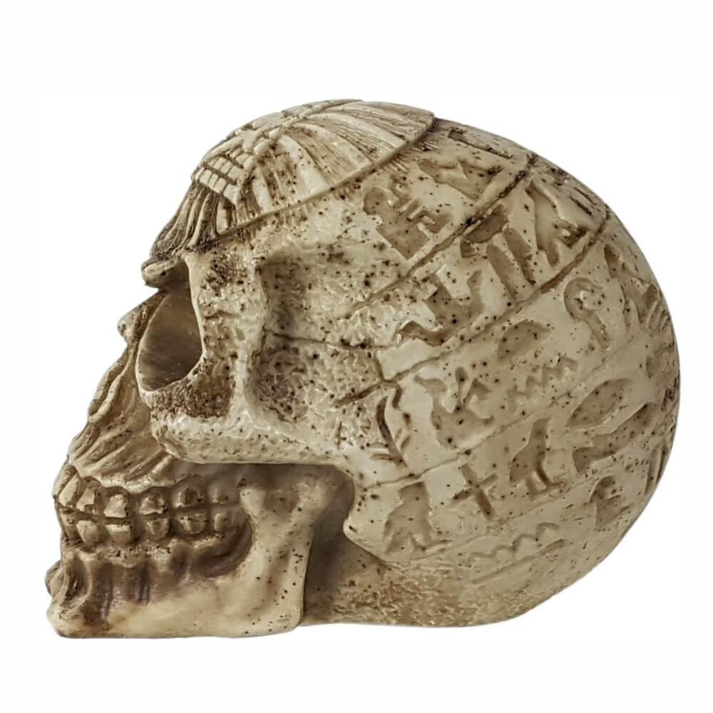 Crânio caveira Egípcio detalhes em alto relevo.