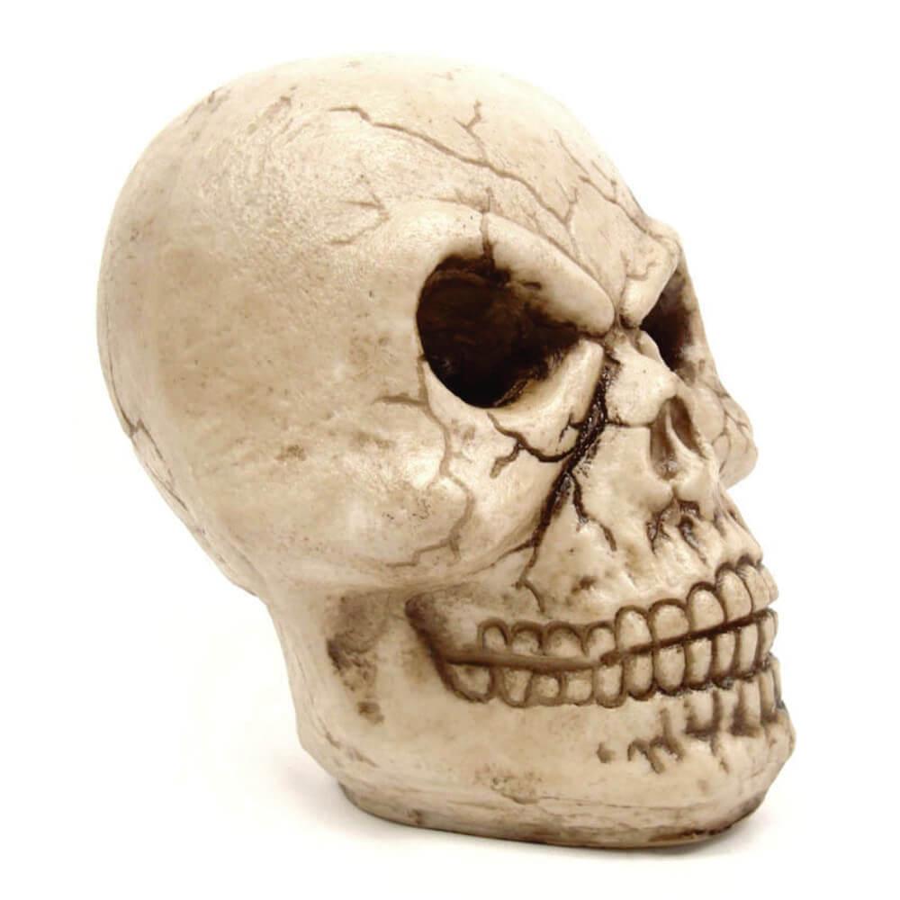 Crânio Caveira Gigante Frankenstein.