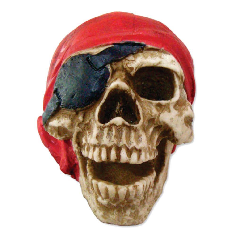 Caveira Crânio Pirata com tapa olho