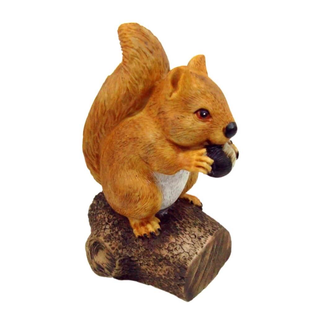 Esquilo No Tronco Pequeno