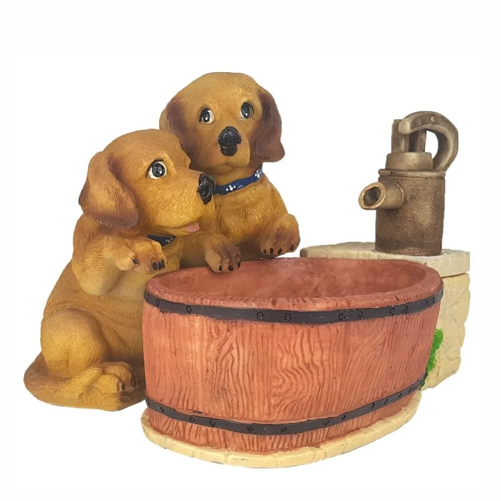 Fonte de água cachorro dog cachorrinho filhotes.