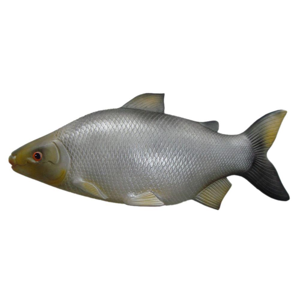 Peixe Curimbatá de parede em alto relevo para decoração.
