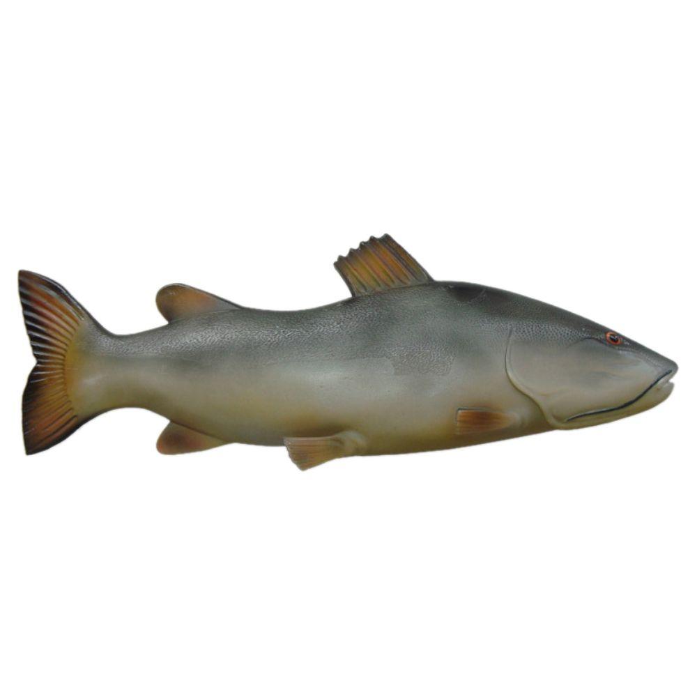 Peixe Pirarara de parede em alto relevo para decoração.