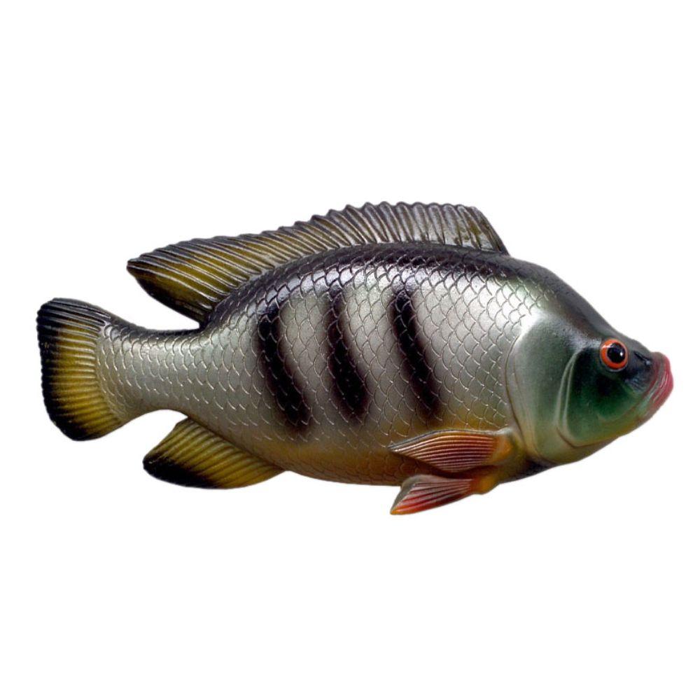 Peixe Tilápia de parede em alto relevo para decoração.