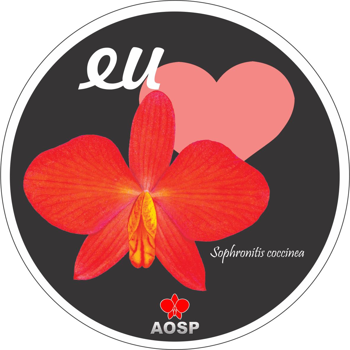 Adesivos AOSP - Sophronitis coccinea