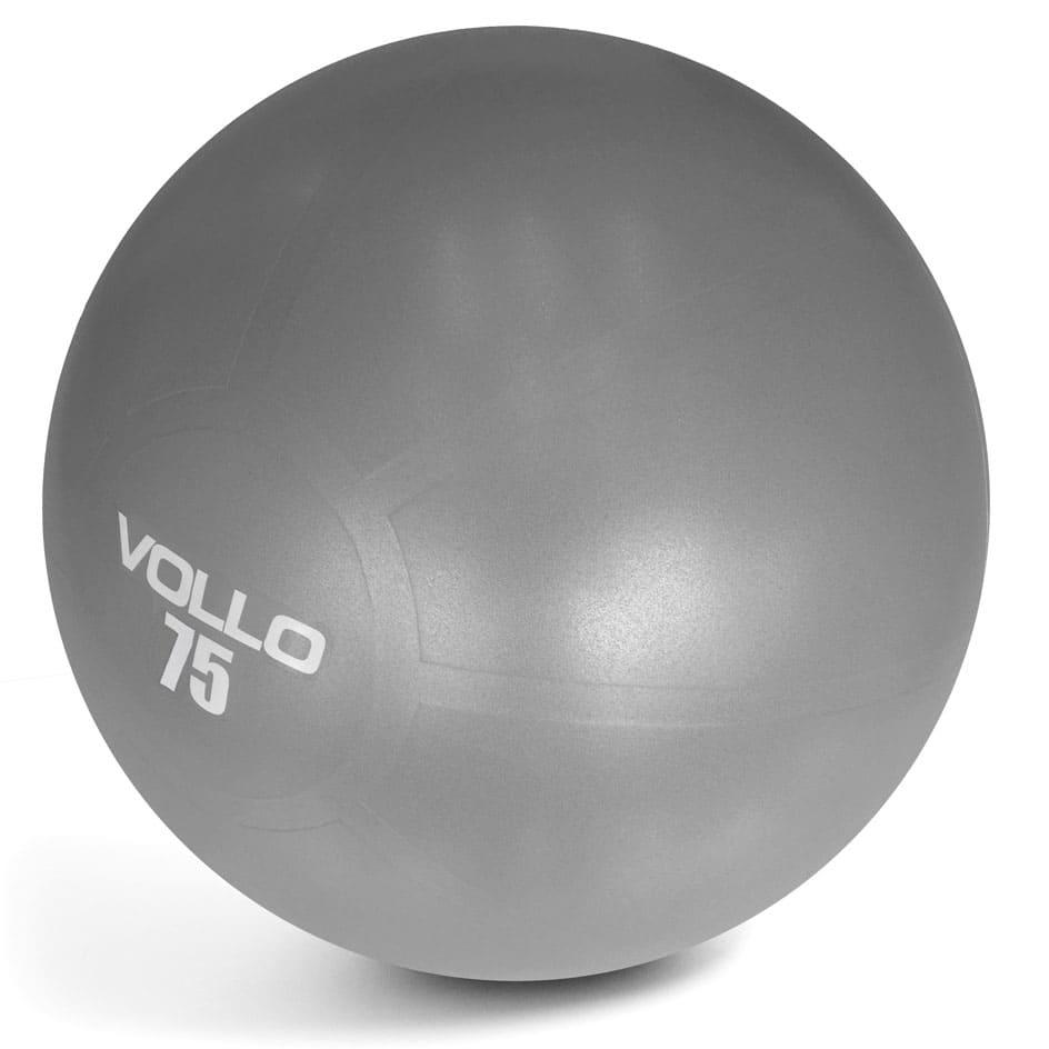 Gym Ball Tam 75 Cm Cinza C/ Res 300 Kg C/ Bomba  - Alegria Brinquedos