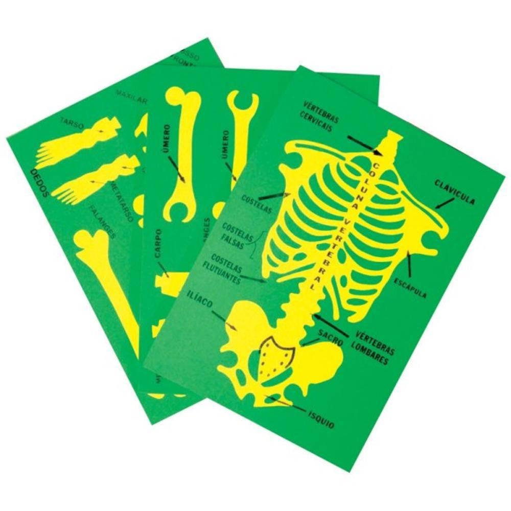 Sistema Esqueletico Em E.v.a. Com 75 Cm De Altura  - Alegria Brinquedos