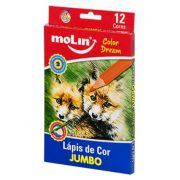Lápis de Cor Jumbo Color Dream com 12 Cores Molin