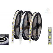 Fita LED 5050 BF IP20