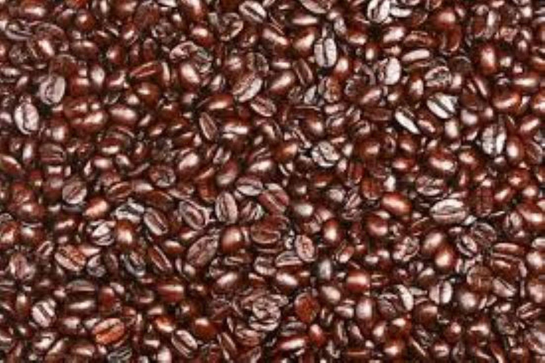 CAFÉ EM GRÃOS TORRADOS- KIT COM 5 KG