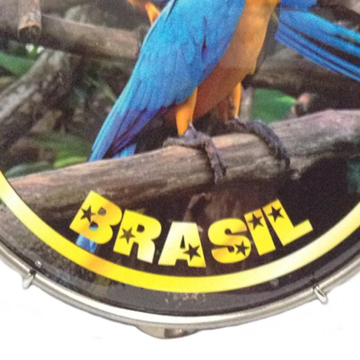 Pandeiro Luen 10 Souvenir Em Abs Estampa Araras Brasil