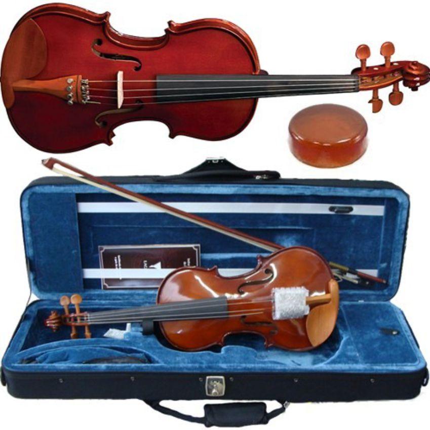 Violino Eagle 4/4 Classic Eagle Ve 441 Com Case