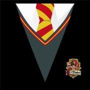 Quadro Harry Potter 28x28 cm