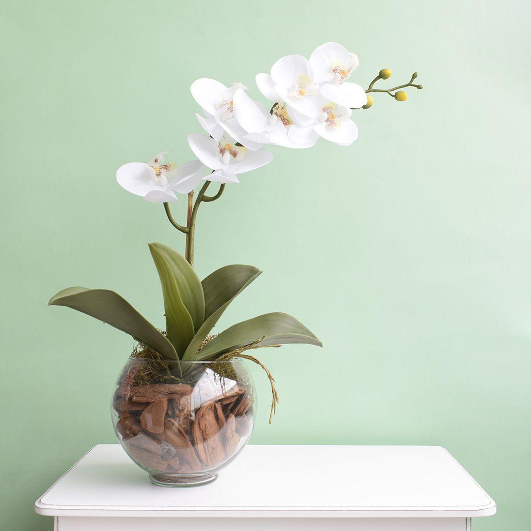 Arranjo Artificial de Orquídea Branca de Silicone no Vaso Transparente Pequeno   Linha Permanente Formosinha