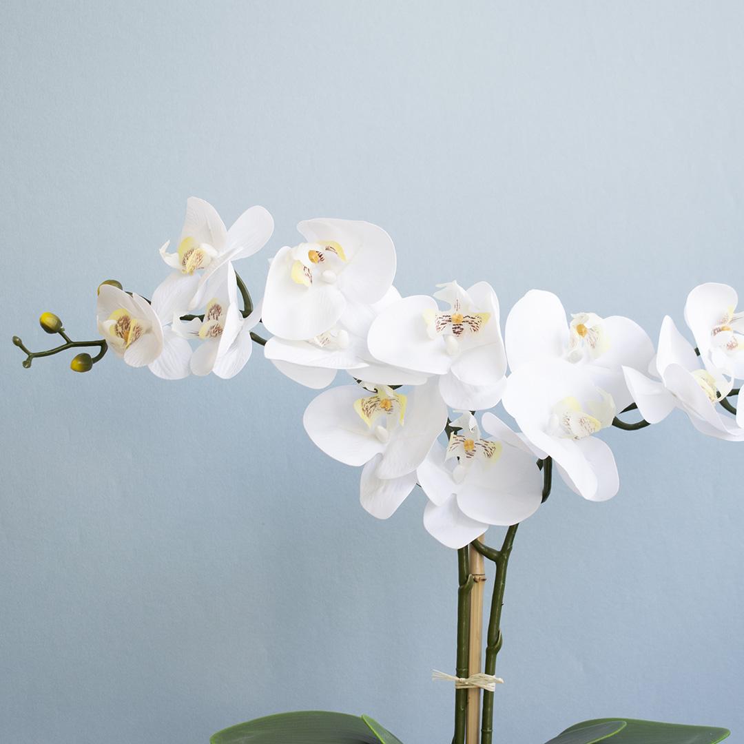 Arranjo Artificial de Orquídeas Branca de Silicone no Vaso Fendi Fosco Médio | Linha Permanente Formosinha