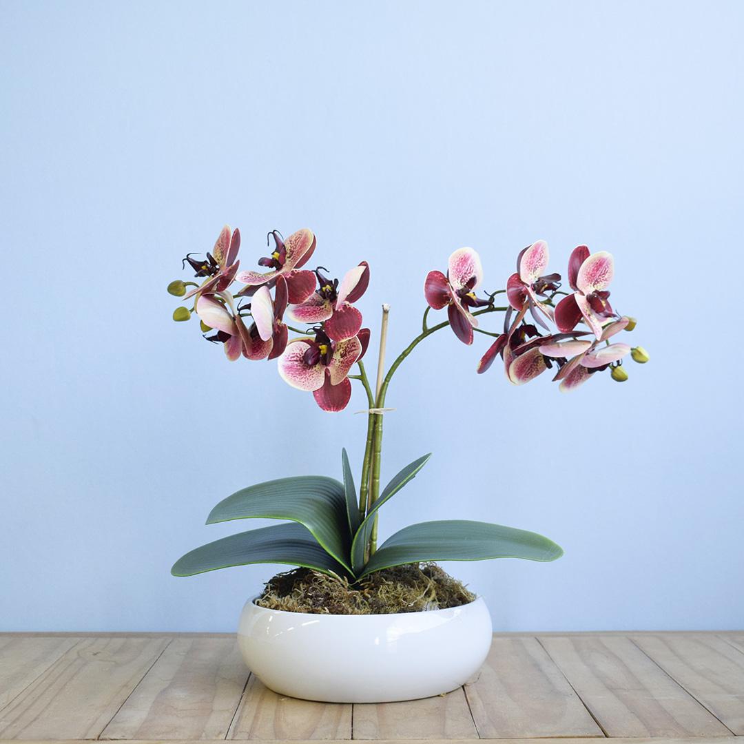 Arranjo de Duas Orquídeas Artificial no Vaso de Cerâmica Branco | Linha Permanente Formosinha