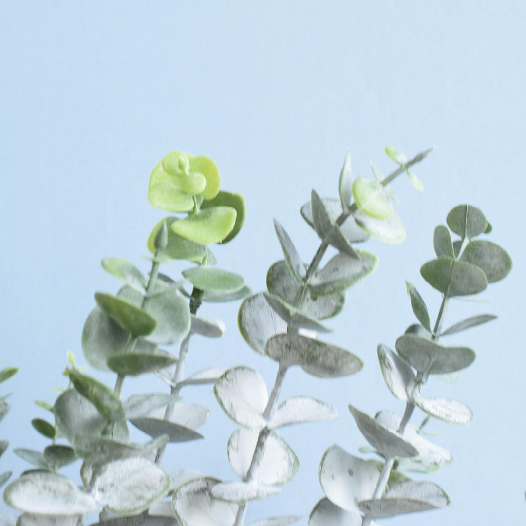 Arranjo de Eucalipto e Bromélia Artificiais no Vaso de Vidro Nude Fosco |Linha Permanente Formosinha