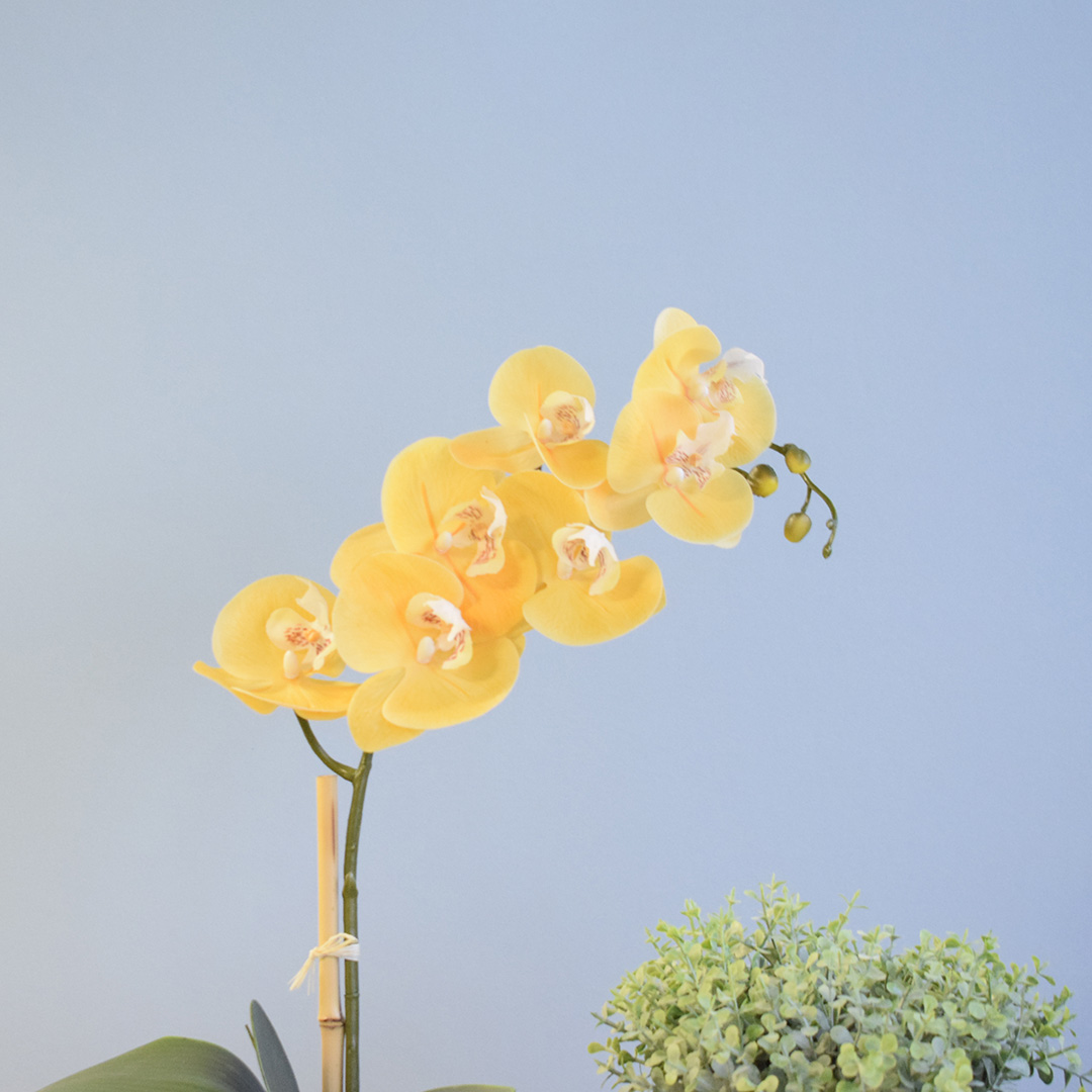 Arranjo de Flor Artificial Orquídea Amarela no Vaso de Vidro Preto Fosco | Linha Permanente Formosinha