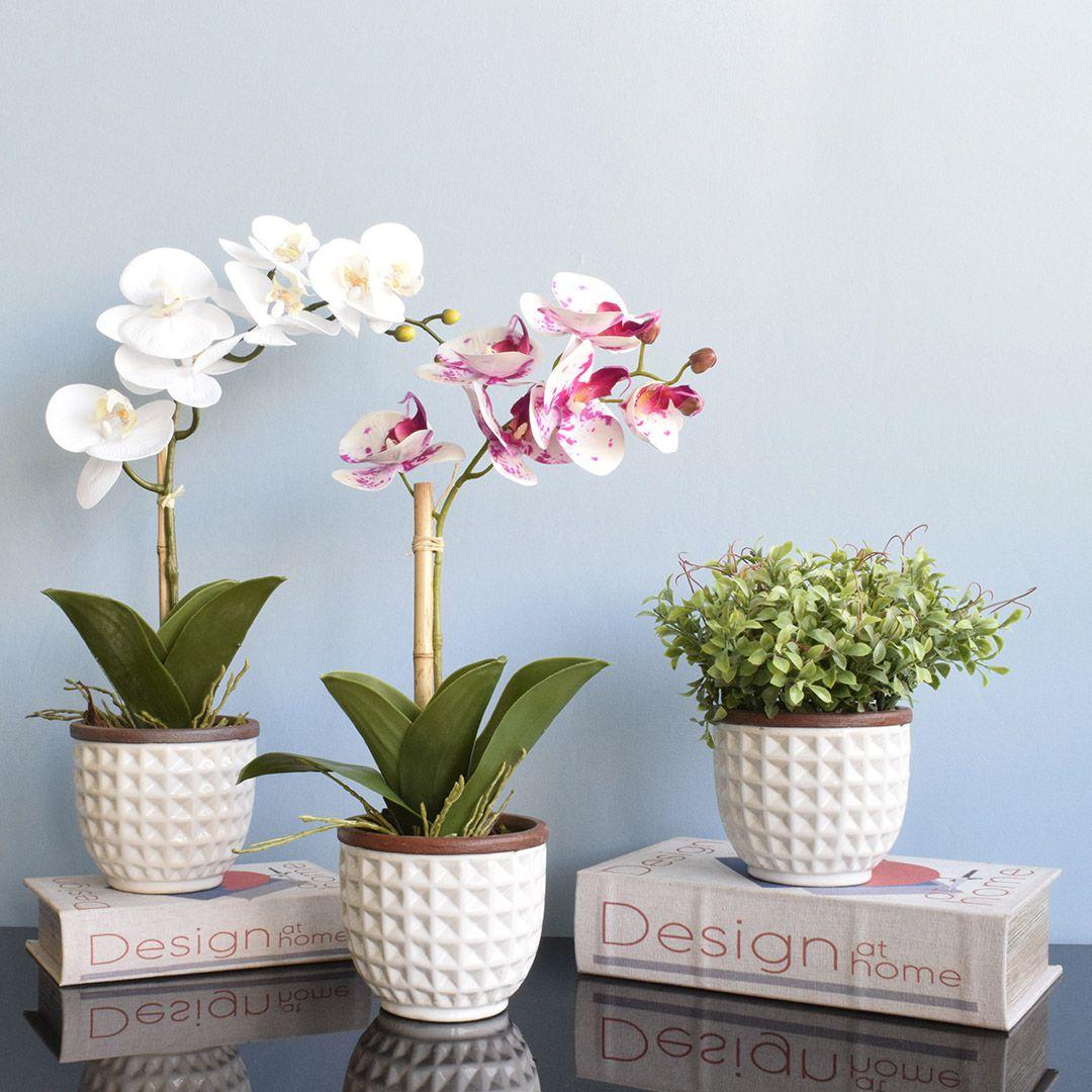 Arranjo de Flor Artificial Orquídea Branca no Vaso de Cerâmica Branco   Linha Permanente Formosinha
