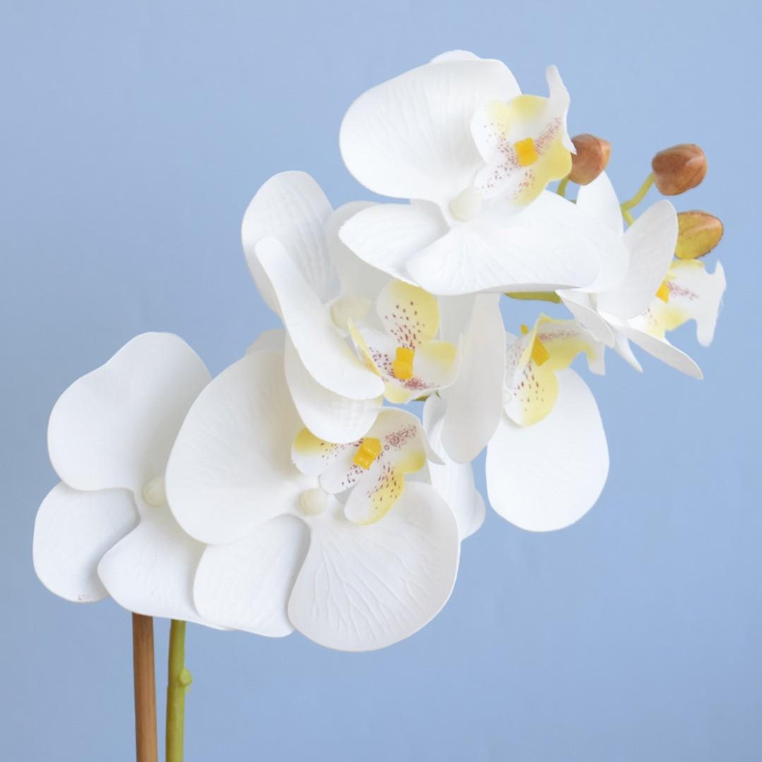 Arranjo de Flor Artificial Orquídea Branca no Vaso de Cerâmica Preto e Azul   Linha Permanente Formosinha