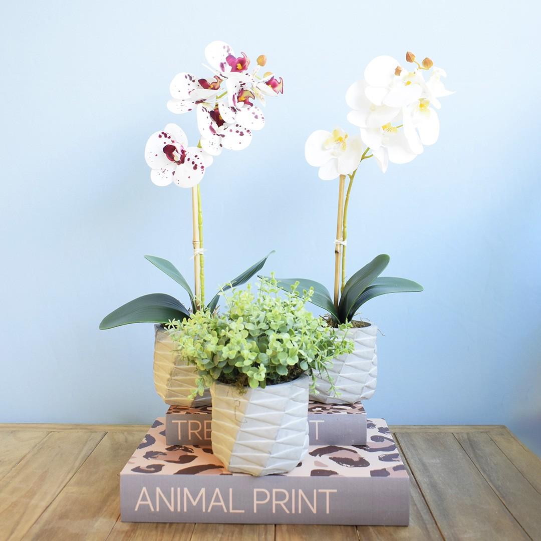 Arranjo de Flor Artificial Orquídea Branca no Vaso de Cimento Geométrico | Linha Permanente Formosinha