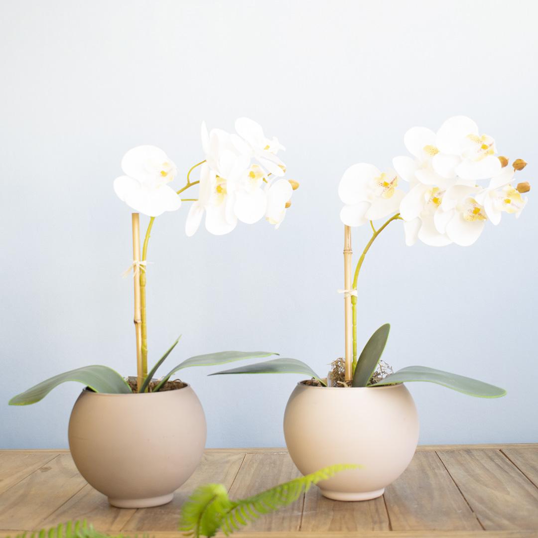 Arranjo de Flor Artificial Orquídea Branca no Vaso de Vidro Nude Fosco | Linha Permanente Formosinha