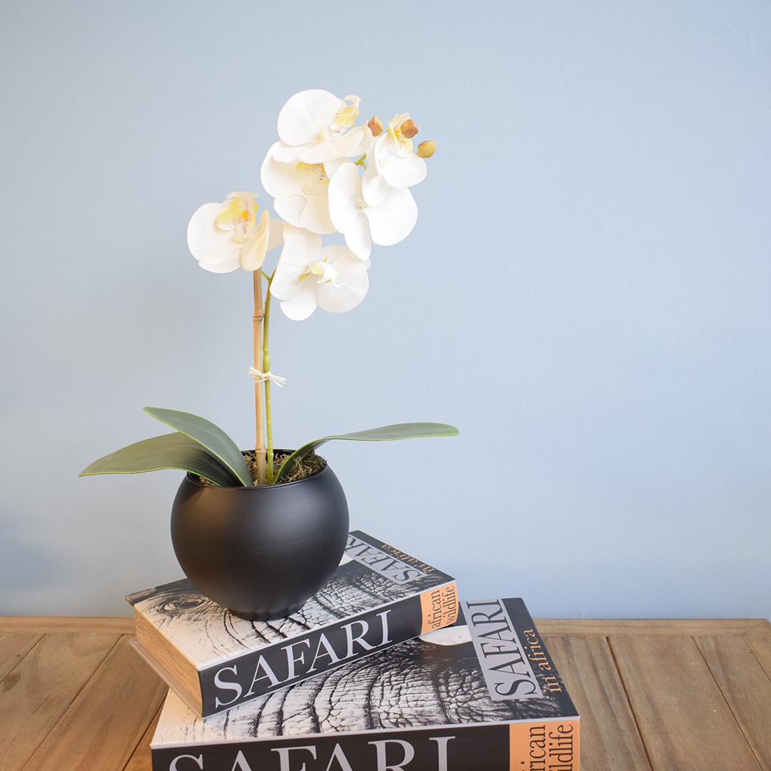 Arranjo de Flor Artificial Orquídea Branca no Vaso de Vidro Preto Fosco   Linha Permanente Formosinha