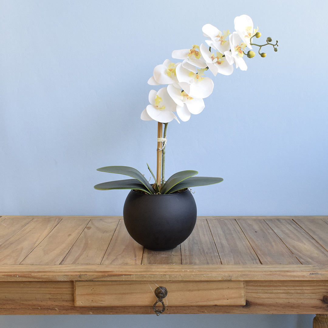 Arranjo de Flor Artificial Orquídea Branca no Vaso Médio Preto Fosco | Linha Permanente Formosinha
