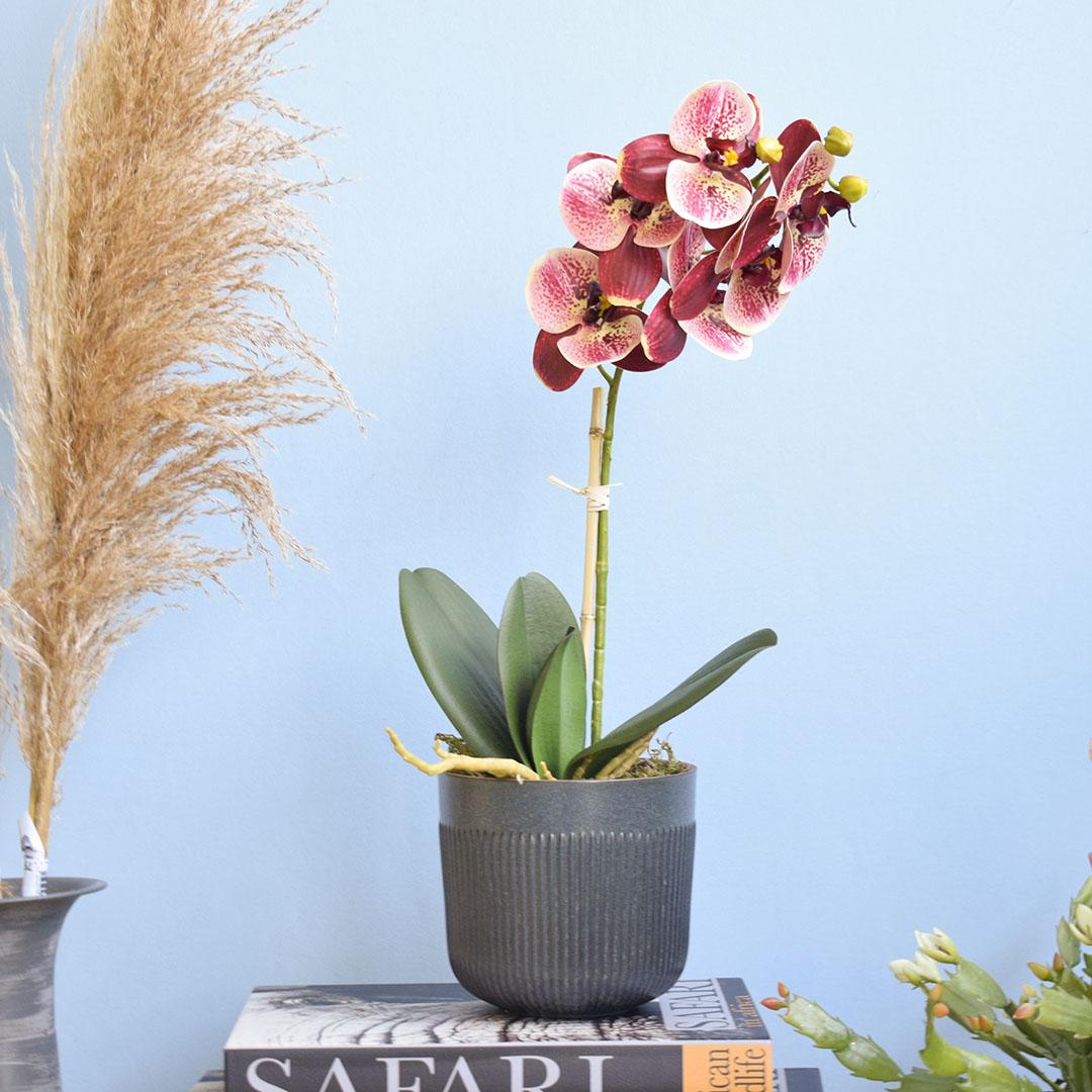 Arranjo de Flor Artificial Orquídea Coral de Silicone no Vaso de Cerâmica Preto | Formosinha
