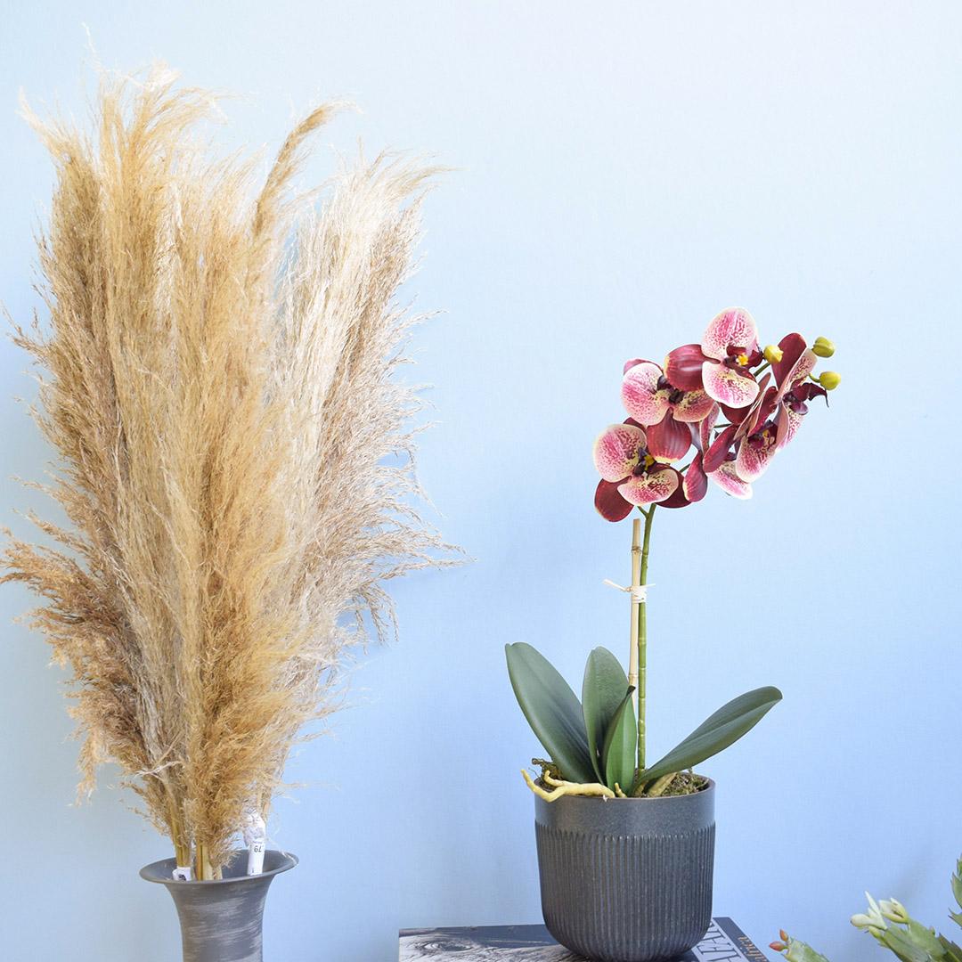 Arranjo de Flor Artificial Orquídea Coral no Vaso de Cerâmica Preto | Formosinha