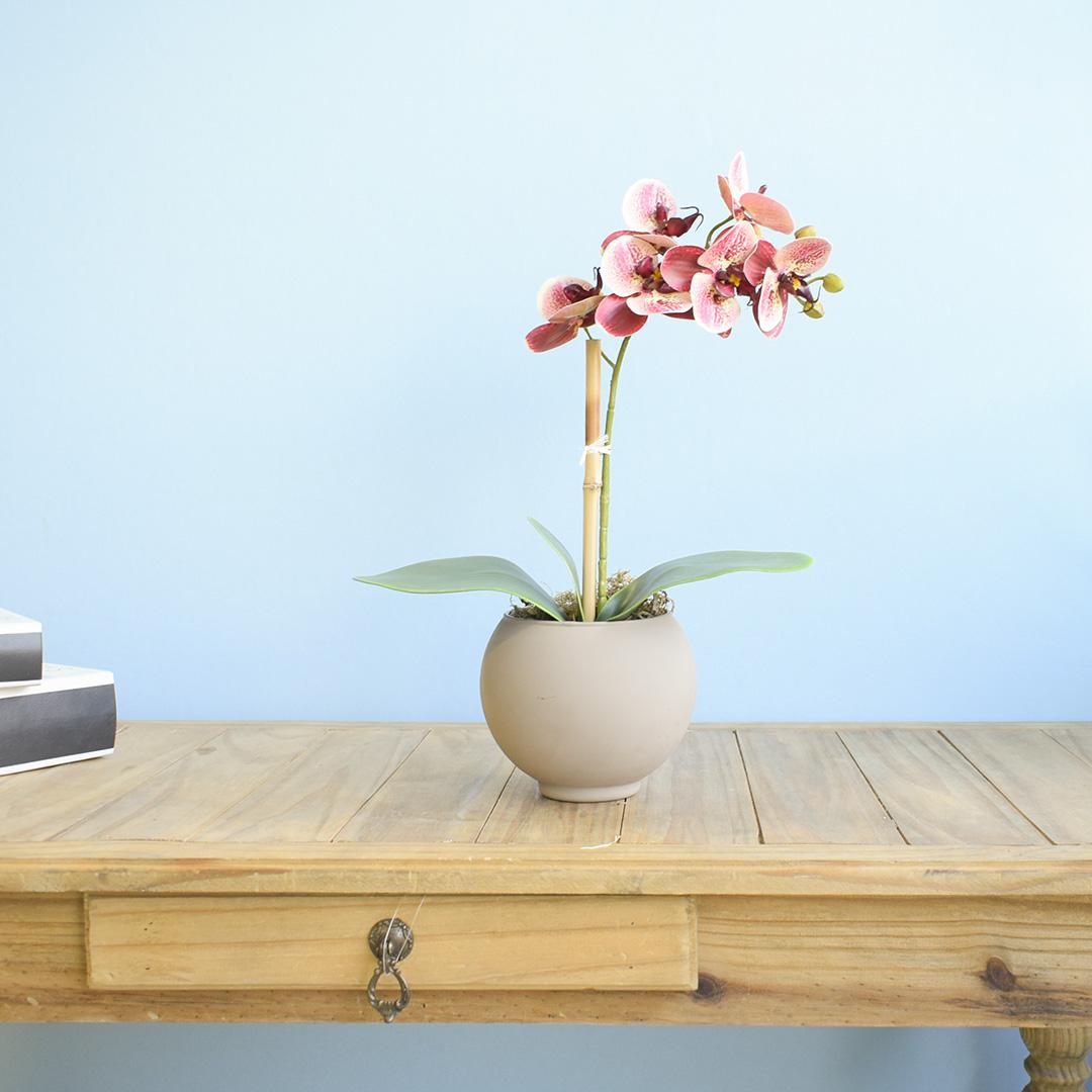 Arranjo de Flor Artificial Orquídea Coral no Vaso de Vidro Fendi Fosco | Linha Permanente Formosinha