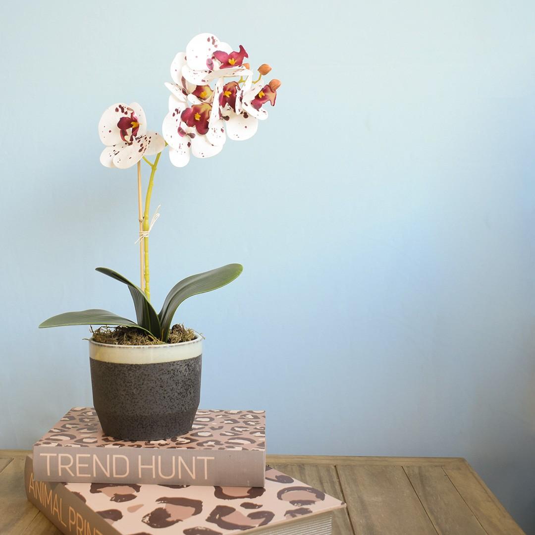 Arranjo de Flor Artificial Orquídea Tigre de Silicone no Vaso de Cerâmica Preto e Azul | Linha Permanente Formosinha