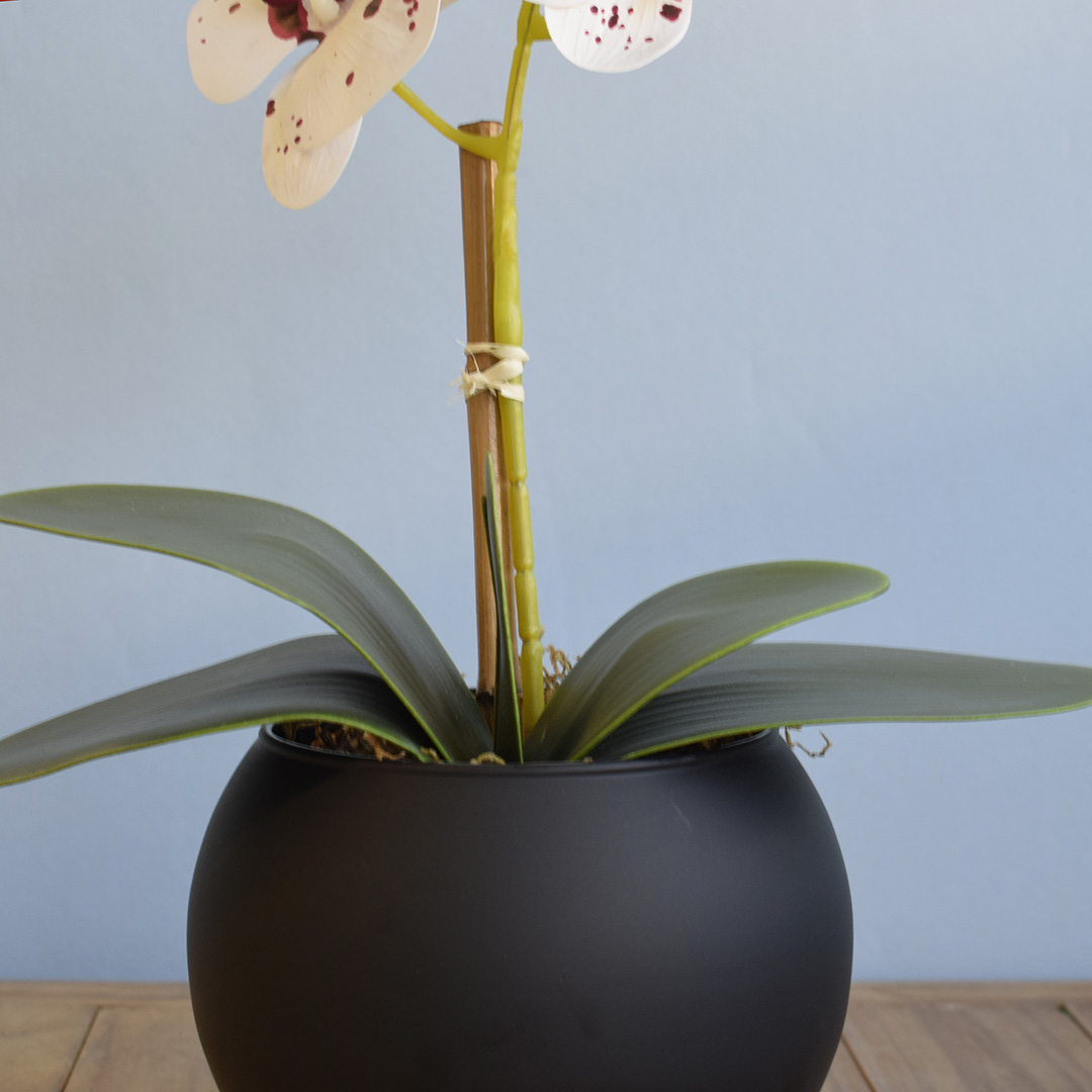 Arranjo de Flor Artificial Orquídea Tigre de Silicone no Vaso de Vidro Preto Fosco | Linha Permanente Formosinha