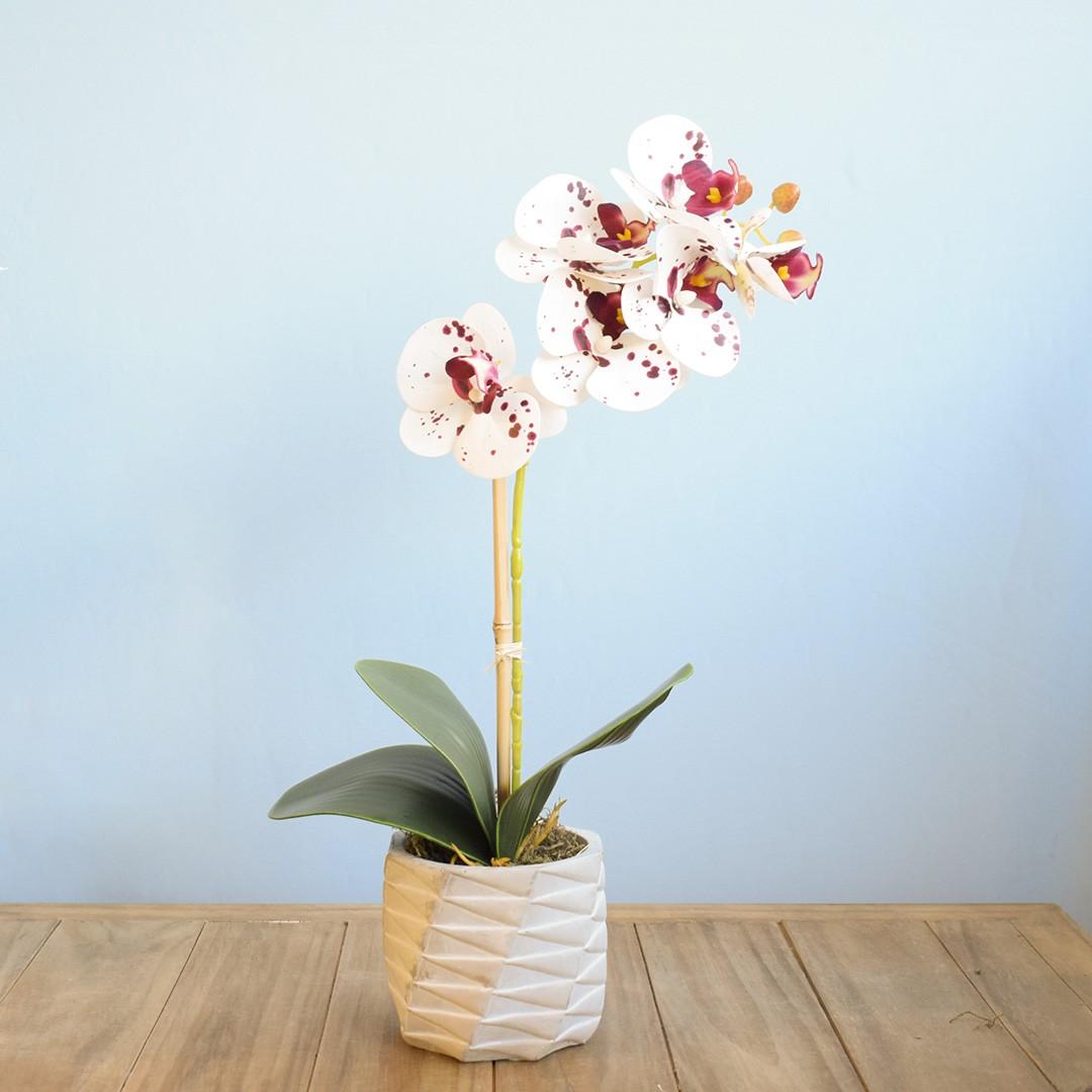 Arranjo de Flor Artificial Orquídea Tigre no Vaso de Cimento Geométrico | Linha Permanente Formosinha