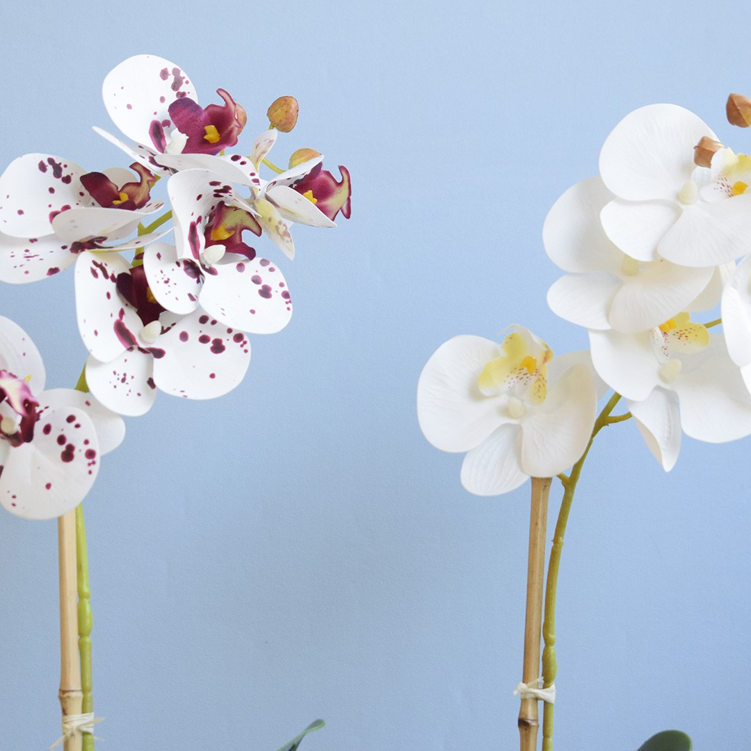 Flor Artificial Arranjo de Orquídea Tigre no Vaso de Cimento Geométrico   Linha Permanente Formosinha