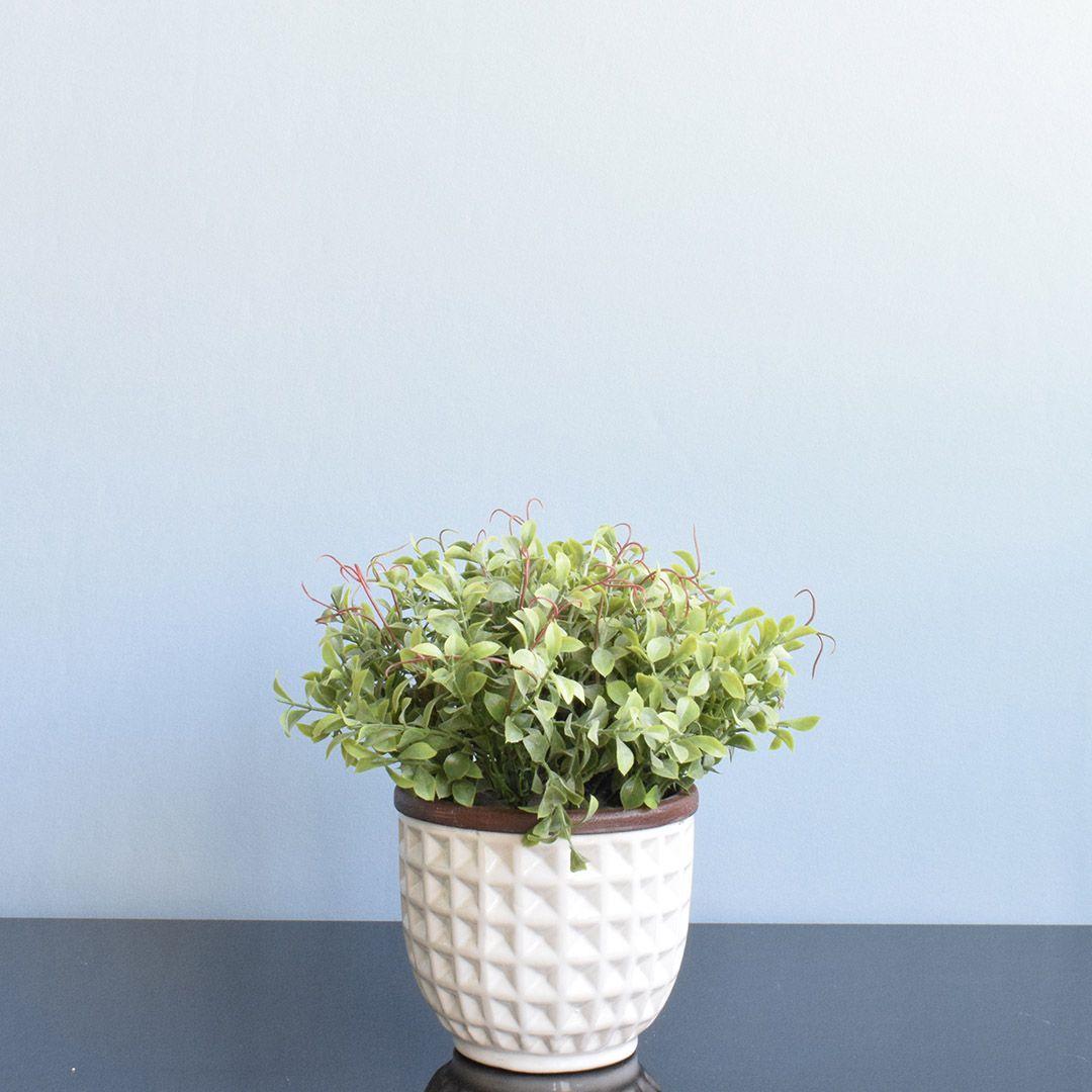 Arranjo de Folhagem Artificial no Vaso Cerâmica Branco Escandinavo |Linha Permanente Formosinha