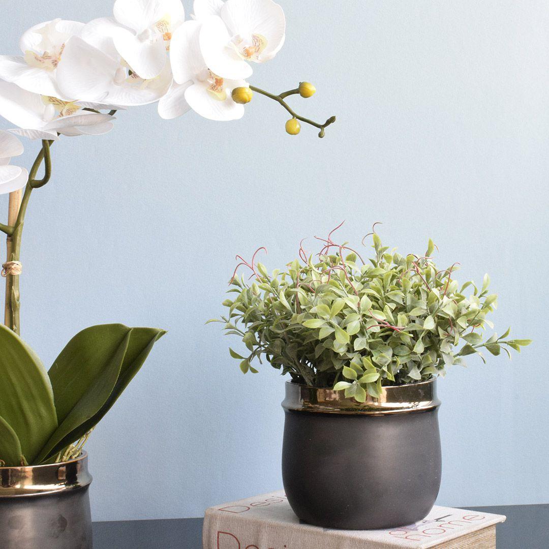 Arranjo de Folhagem Artificial no Vaso Cerâmica Preto e Bronze |Linha Permanente Formosinha