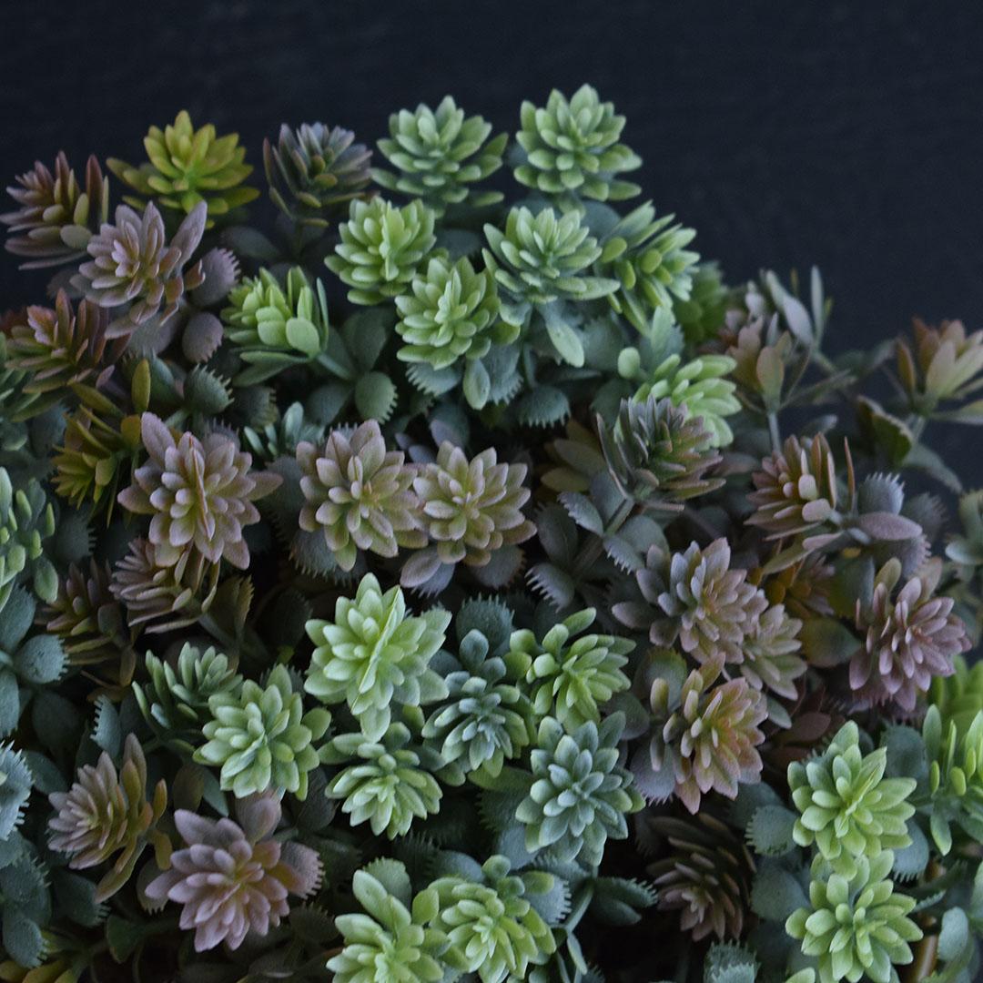Arranjo de Folhagem Colorida no Vaso Cerâmica Verde Baixo | Linha Permanente Formosinha