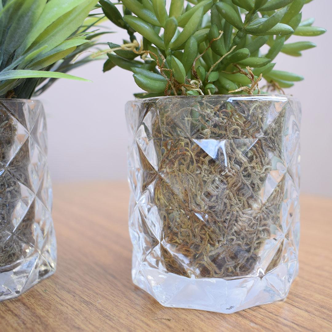 Arranjo de Folhagem e Suculentas no Vaso de Vidro - Kit com Dois Arranjos | Linha permanente Formosinha