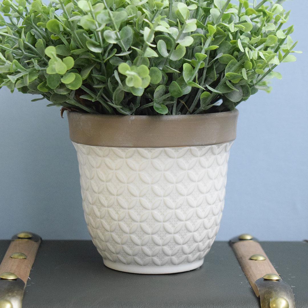 Arranjo de Folhagem Eucalipto no Vaso de Cerâmica Branco P | Formosinha