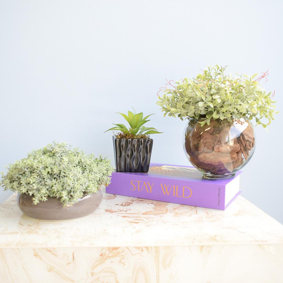 Arranjo de Folhagem no Vaso Cerâmica Cinza Baixo | Linha Permanente Formosinha