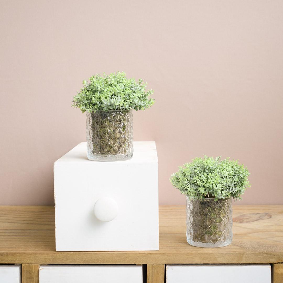 Arranjo de Folhagem no Vaso de Vidro - Kit com Dois Arranjos |Linha permanente Formosinha