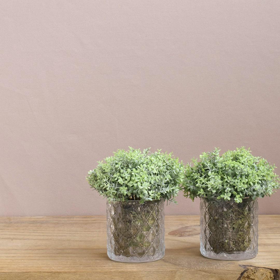 Arranjo de Folhagem no Vaso de Vidro - Kit com Dois Arranjos | Linha permanente Formosinha