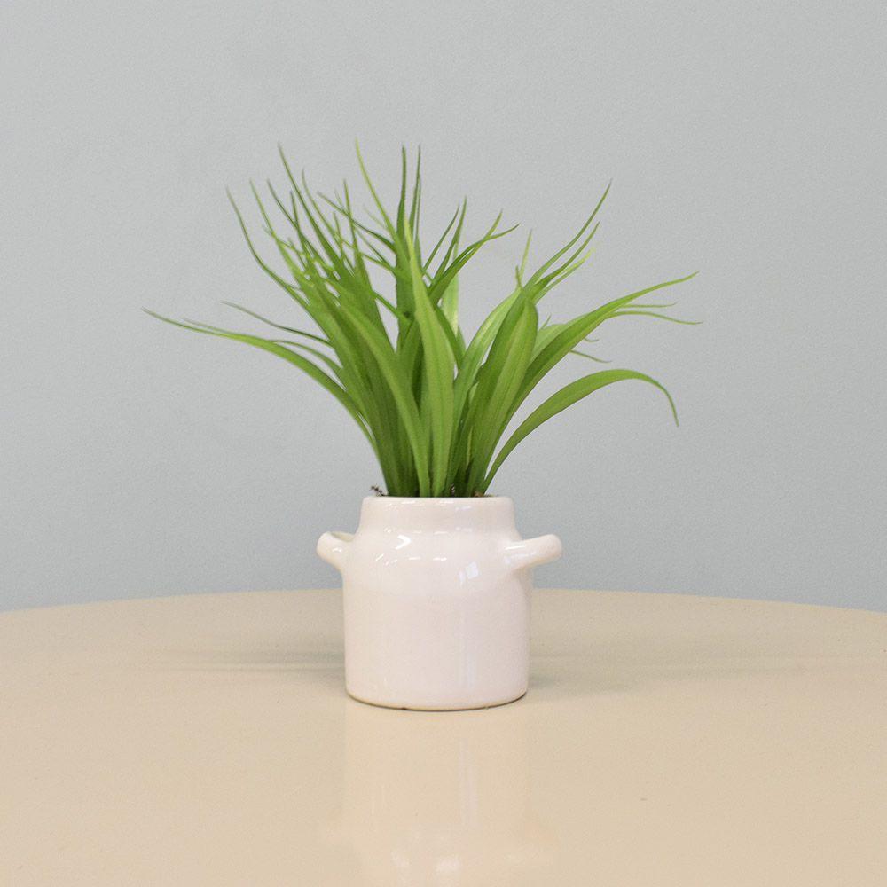 Arranjo de Mini Folhagem no Vaso Leiteira de Cerâmica|Linha Permanente Formosinha